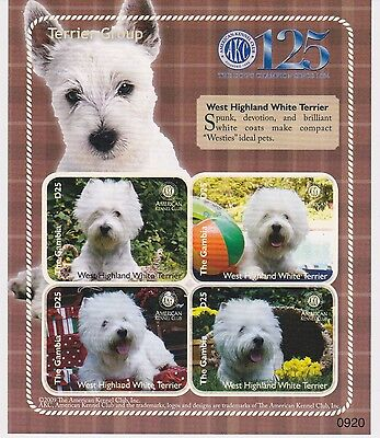 Gambia - Dogs, Terrier, 2009 - Sc 3200 Sheetlet of 4 MNH IMPERFORATE