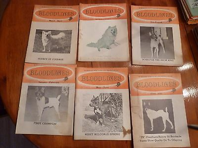 Bloodlines Pure Bred Dog Magazine lot of 6 1970 1971