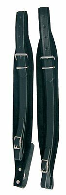 Scarlatti Accordions 120 Bass Accordion Straps