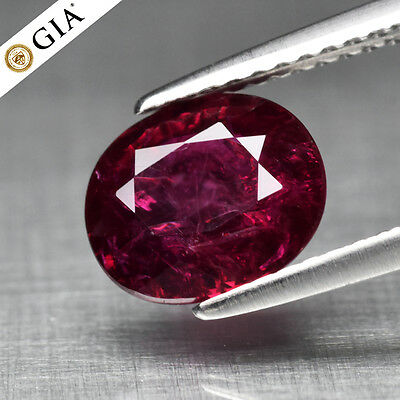 RARE! 2.13ct Oval Natural Unheated Red Ruby *Full Report GIA Certified