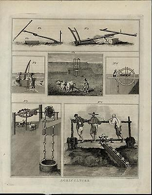 Agriculture Tools Irrigation Plow Yoke Farming 1814 scarce antique History print