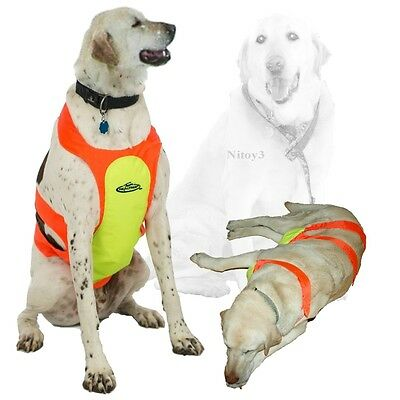 Team RealTree Dog Chest Protector - Reflective XL