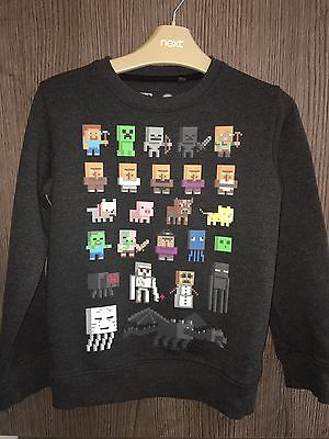 Boys Grey Minecraft Long Sleeved Top/ Jumper Size 7 Years