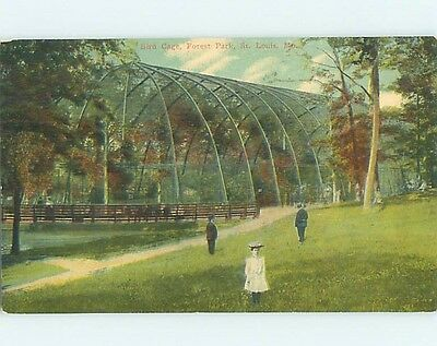 Unused Divided-Back PARK SCENE St. Louis Missouri MO hk8949
