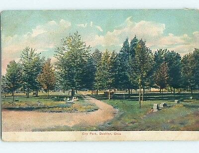 Divided-Back PARK SCENE Deshier Ohio OH hk8349
