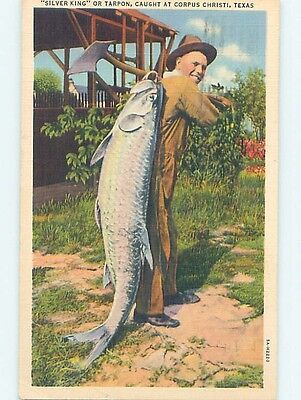 Damaged Linen Fishing HUGE TARPON FISH CAUGHT Corpus Christi Texas TX HM9575