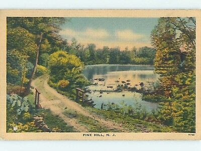 Linen COUNTRY ROAD Pine Hill New Jersey NJ HM9917