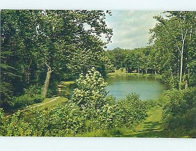 Unused Pre-1980 PARK SCENE Sidney Ohio OH hk6042