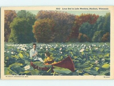 Unused Linen POSTCARD FROM Madison Wisconsin WI HM8903
