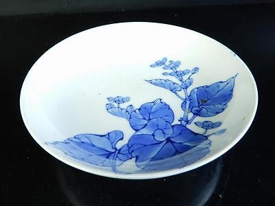H1480:Japanese Old Nabeshima-ware ORNAMENTAL PLATE/Dish Arabesque pattern