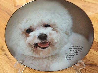 Danbury Mint EYES OF LOVE Bichon Frise Limited Edition Plate