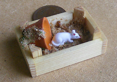 1:12 Scale Dolls House Miniature White Resin Pet Mouse At Play Accessory