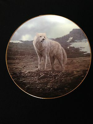Tundra Song Wolf Plate Winter Guardians Collection Bradford Exchange Isaac