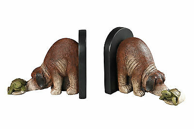 Sterling Industries Hatching Turtle Book Ends Set of 2