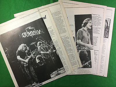 Grateful Dead 1981 press cutting nine pages article / feature