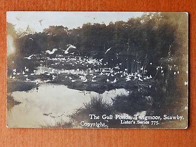 1906 Lister series postcard: The Gull Ponds, Twigmoor, Scawby, Lincolnshire