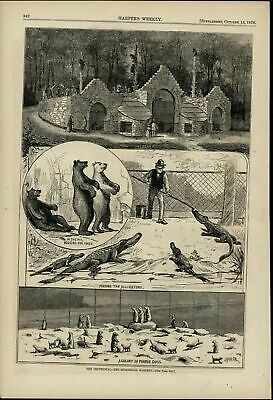 Centennial Zoological Gardens Alligators Bears 1876 great old print for display