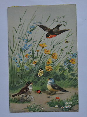 Spain Vintage Greeting Card. Flowers. Birds. Tit. Sparrow. Butterfly.  1956