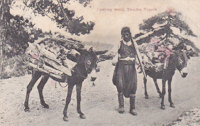 Cyprus Postcard Carrying Wood Troodos Early Social By Foscolo No 20