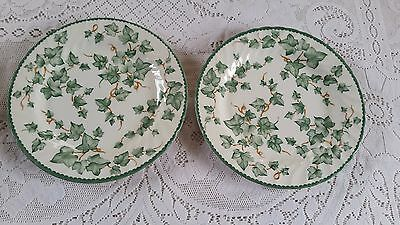 2 British Home Stores Country Vine Dinner Plates