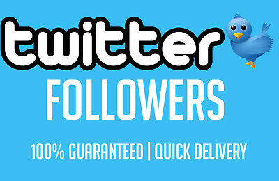 5K HQ Twitter-Follower- Fast, Safe,Ultra Quality, Extra Delivery!