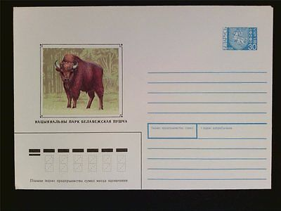 BELARUS ANIMALS BISON WISENT BUFFALO BISONS WISENTE Ganzsache Cover c5674