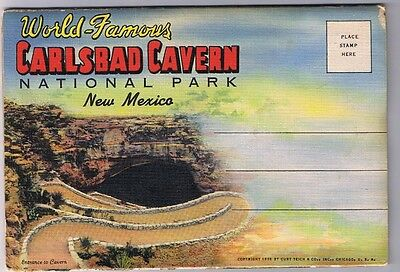 Carlsbad Cavern National Park - New Mexico -  Postcard Folder