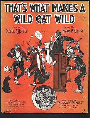 That's What Makes A Wild Cat Wild 1918 Large Format Sheet Music