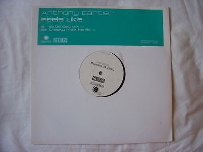 "ANTHONY CARTIER Feels Like UK 12"" 2004 test pressing"