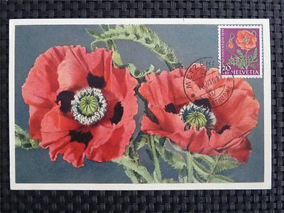 Schweiz Mk 1959 689 Pflanzen Mohn Flowers Maximumkarte Maximum Card Mc Cm 9779