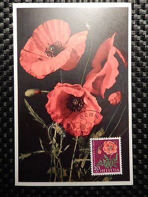 SCHWEIZ MK 1959 689 BLUMEN MOHN FLOWERS MAXIMUMKARTE MAXIMUM CARD MC CM a7783