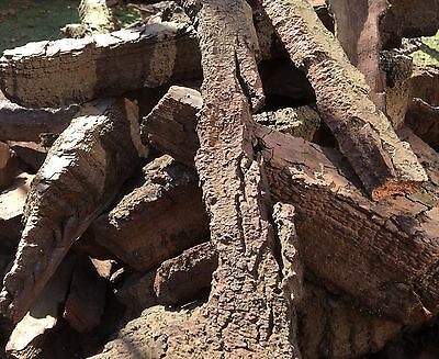 CORK BARK 1000G Virgin VIVARIUM SNAKE TARANTULA REPTILE DRAGON PRAYINGp