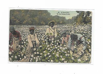 """46. """"A Busy Day in the Cotton Fields"""" To Newark, NY vintage postcard"""