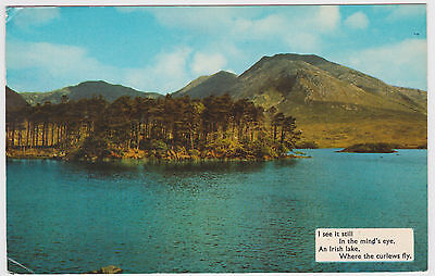 "Postcard Ireland. ""I See It Still In Mind's Eye An Irish Lake Where Curlews Fly"""