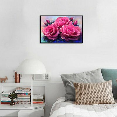 AE0061 20*30cm Rose Pattern With Drill Embroidery Home Decor Diamond Painting HH