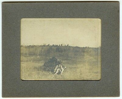 VINTAGE DOG HUNTING POINTERS SPORT CANINE:  Pointer Trials Silver  Cabinet Card