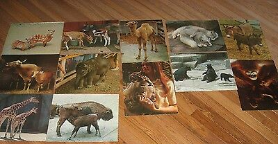 Zoo Animals National Dairy Council 12 VINTAGE  WE ALL LIKE MILK posters 1970s