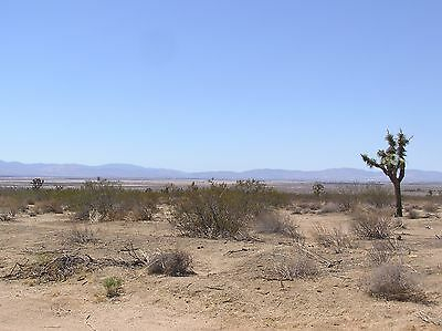 2.18 Acres Scenic & Peaceful Land In Lancaster, Ca; Homes & Power Near Property