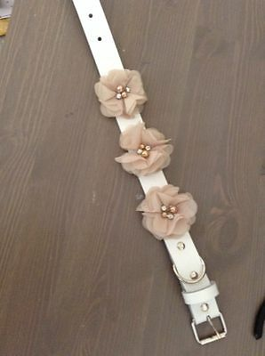 White Leather Dog Wedding Collar with Beige Silk Flower With Faux Pearl and Rhin