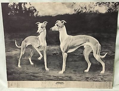 Vintage Whippet Dog Pair Called Rendezvous George Ford Morris 1952 Print