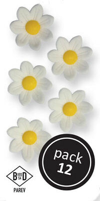 PME WHITE Pointed Daisies Floral Flowers Icing Sugar Cup Cake Decorations 12 Pk