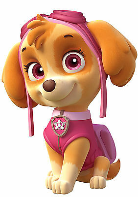 Paw Patrol Poster SKYE Hit Kids TV Star, Sports Day, FREE P+P, CHOOSE YOUR SIZE