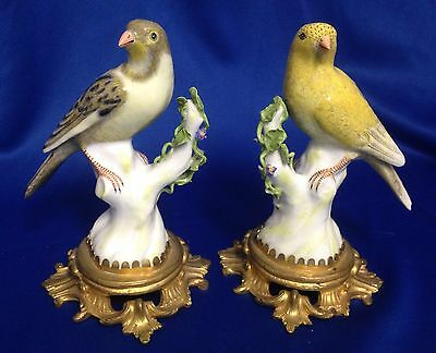 19th C Porcelain Pr of Birds Finches with Ormolu Bases. Make Offer!