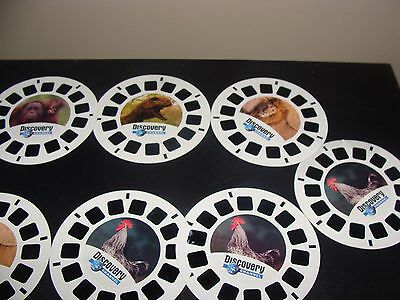 Movie View-Master 9 Rees 3 Sets Clifford  Mickey Mouse Club House  Bambi (j)