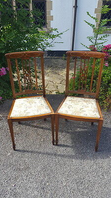 A Very Pretty Pair of Antique Edwardian Inlaid Bedroom/Salon/Hall/Feature Chairs