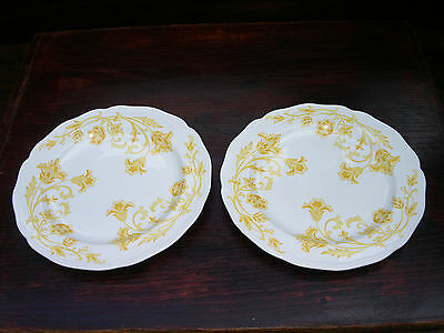 "Set of 2 J & G Meakin Windsong Dinner Plates; 10 1/2"" Across"
