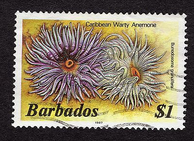 1987 Barbados $1 warty anemone FINE USED R31868