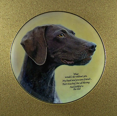Cherished German Shorthaired Pointers LOYAL AND PRECIOUS Plate Danbury Mint HTF!