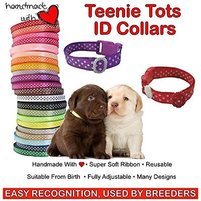 10 Spots Design (Large Breeds - 7.5 - 12 Inches)