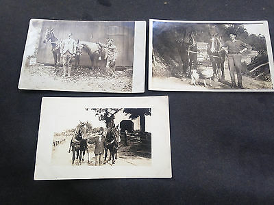 Early Real Photo Horse Postcards circa 1910